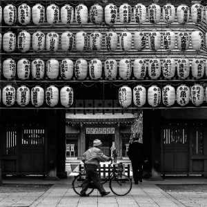 Lanterns in Okunitama Jinja