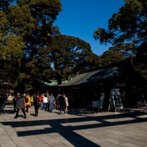Shadow of Torii