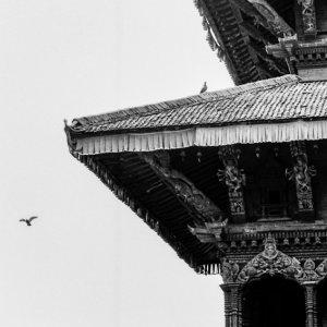 ヒンドゥー教寺院で寛ぐ男