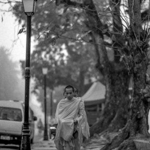 朝の托鉢をする僧侶