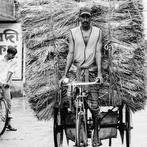 自転車の積荷