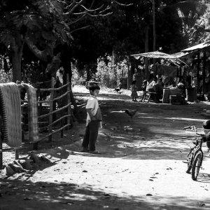 自転車を押す幼い男の子