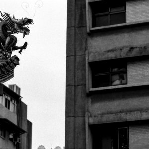 龍とアパート