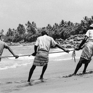 網を引っ張る漁師たち