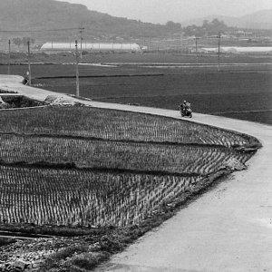 Motorbike running country road