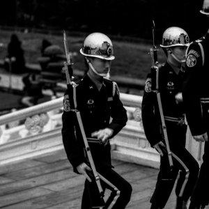 Three guardsmen on stairway