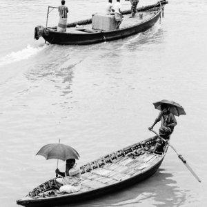 木製の舟の上の蝙蝠傘