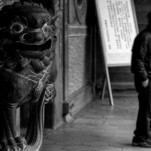 Guardian dog in Baoan Temple