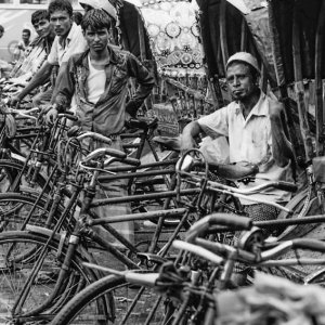 row of cycle rickshaws
