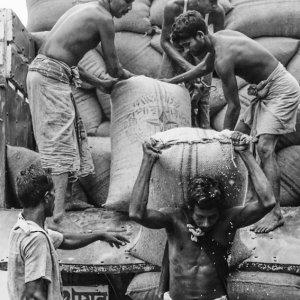 Laborers unloading