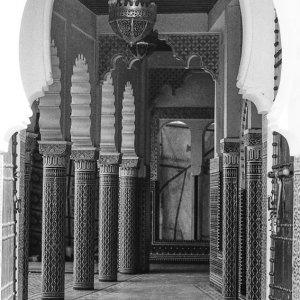 Cat in mosque