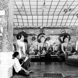 Man reading book beside Buddha images