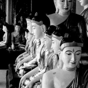 沢山の仏像たち