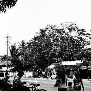 木陰の中の自転車タクシー