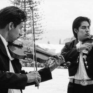 Men playing violin