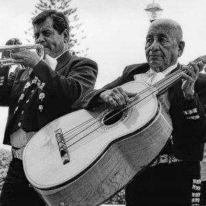 Trumpet and Guitarrón