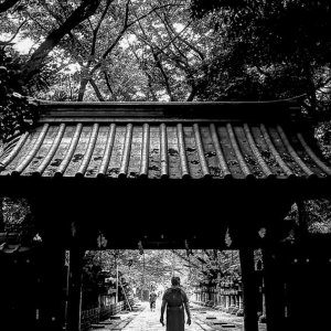 Silhouette passing through gate