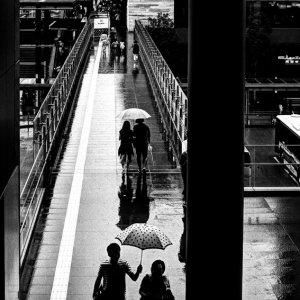 傘の下の若いカップル