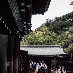 School girls in Shinto shrine