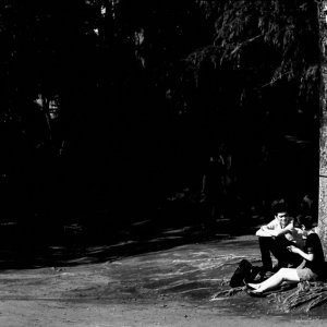 couple sitting at root of tree