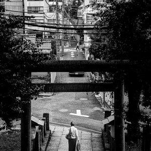 Woman passing through Torii