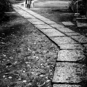参道を歩く人影