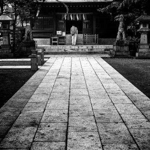 参道の終わりに立つ拝殿