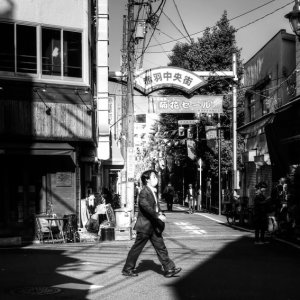 Man walking the sunny place