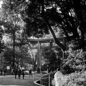 Shinto priest walking