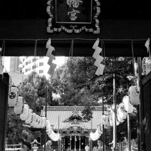 金王八幡宮の入り口