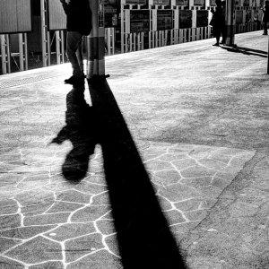 プラットホームの長い影