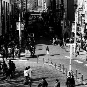 新宿の通り