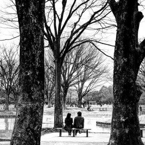 ベンチに腰掛けたカップル