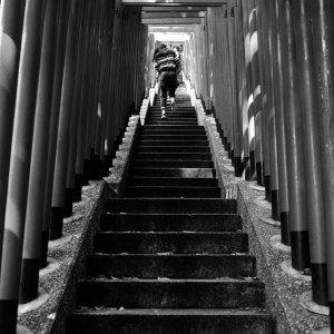 Steep stairway covered by Torii in Hie Jinja