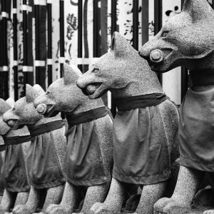 foxe statues in straight rows