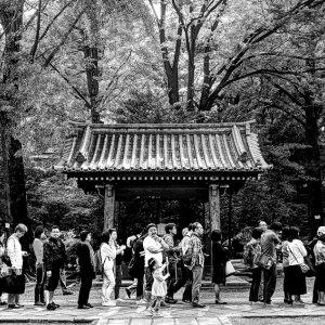 根津神社境内の行列