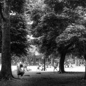 People relaxing in Yoyogi Park
