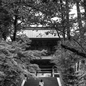Gate of Engaku-Ji