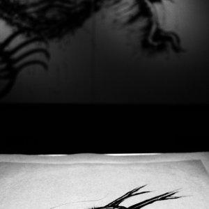 紙に描かれた龍と壁に描かれた龍