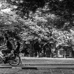 自転車の乗ったお父さんと娘