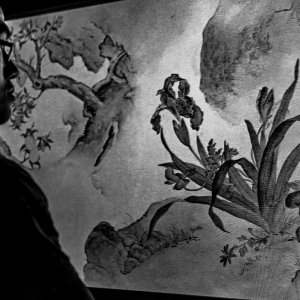 Man looking at an ink brush painting on the screen