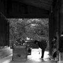 Woman Praying At Izumo Taisha