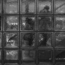 Glass Wall @ Tokyo