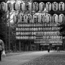 Dangling Lanterns In Okunitama Jinja @ Tokyo