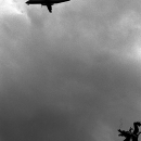 飛行機と龍