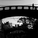 Silhouette Walking On The Bridge