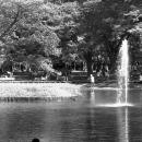 池と子ども