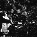 玉藻公園の石灯籠