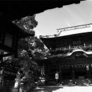 Asahi-sha Shrine @ Kagawa