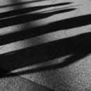 Legs Walking Between Shadows @ Tokyo